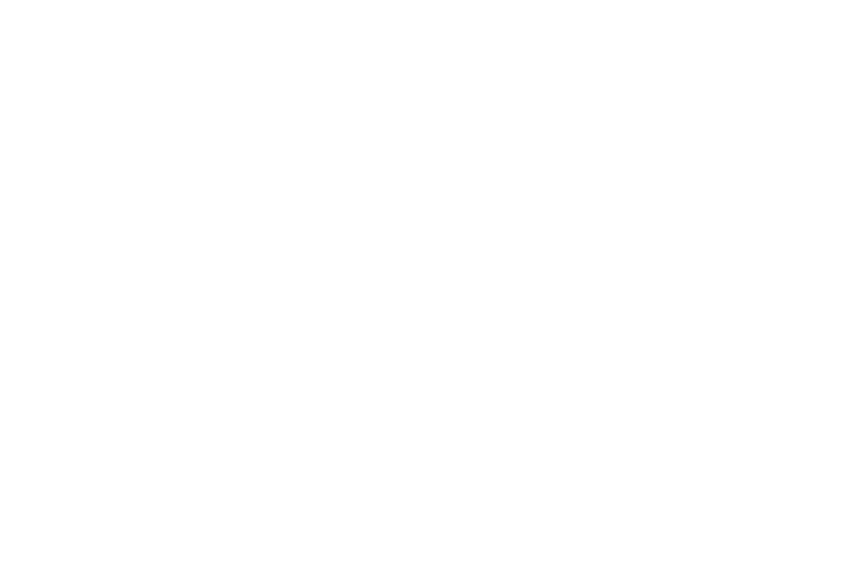 OFFICIAL SELECTION - It Came From the Sky Film Festival - 2020