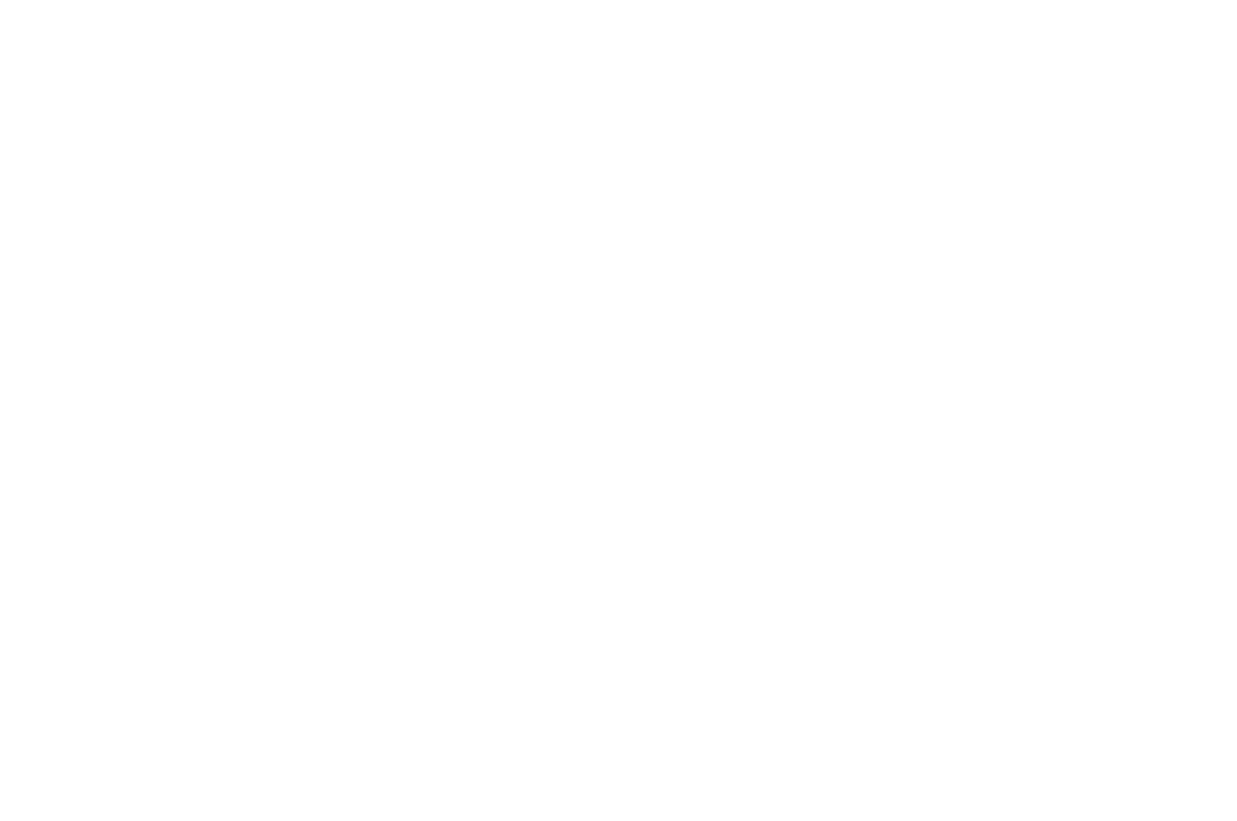 OFFICIAL SELECTION - Script and Storyboard Showcase - 2020