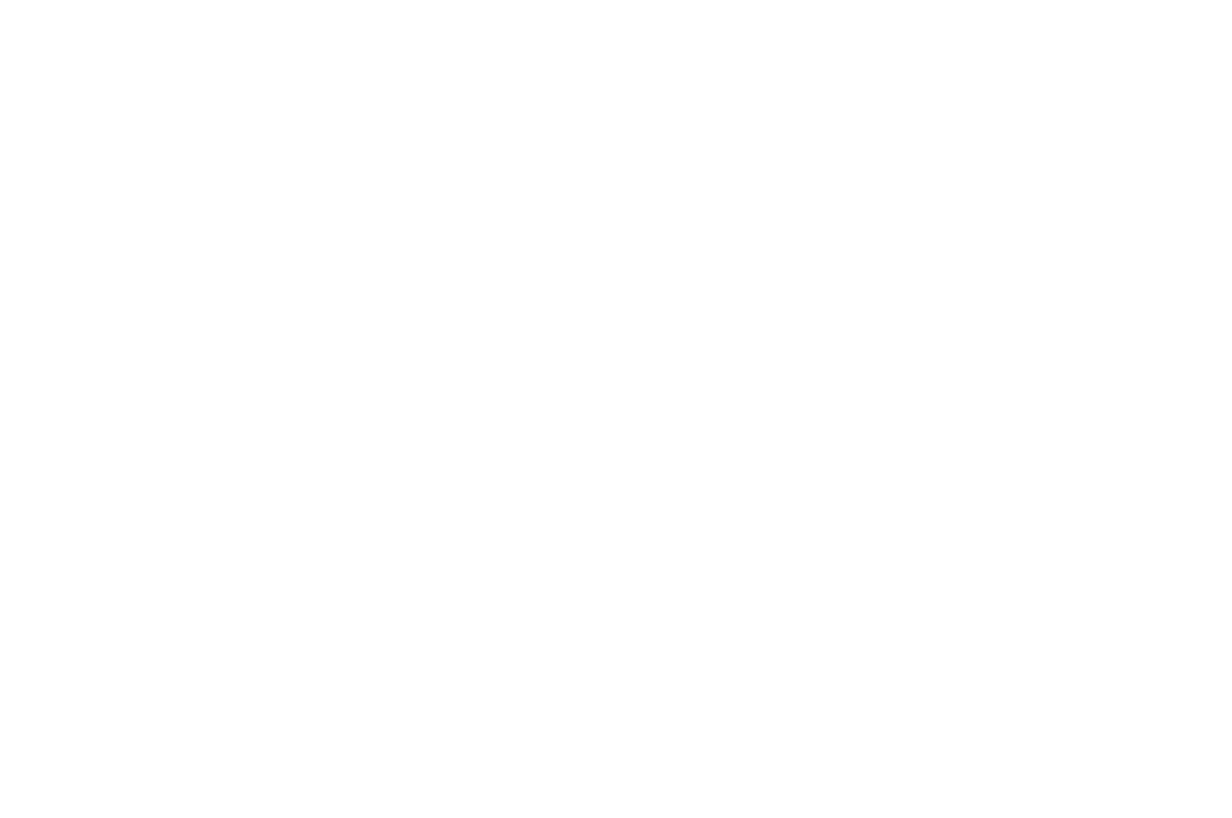 WINNER - California International Shorts Festival Winter - 2020