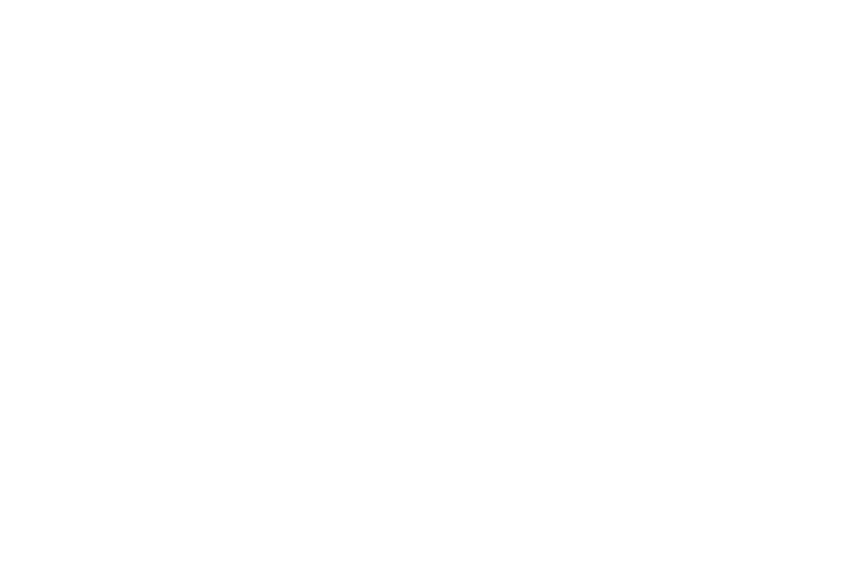OFFICIAL SELECTION - Marina del Rey Film Festival - 2020