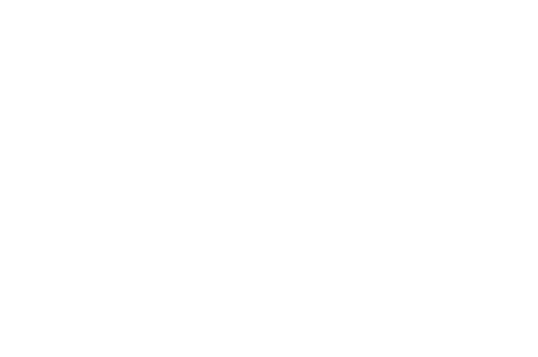 OFFICIAL SELECTION - SoCal Film Awards - 2020