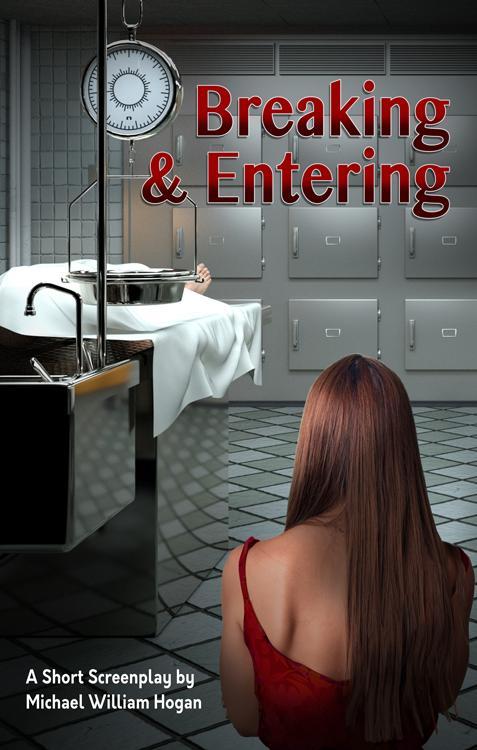 Breaking-Entering-Poster-web