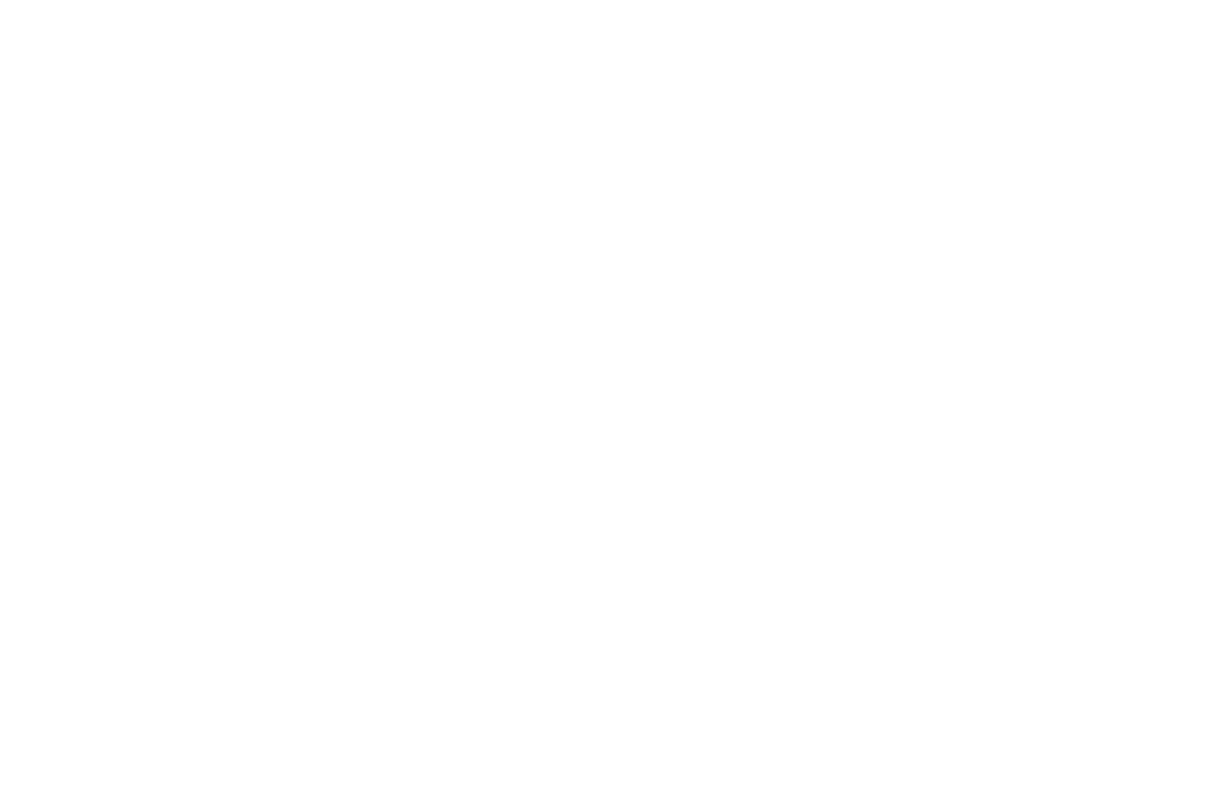 OFFICIAL SELECTION - Tokyo Lift-Off Film Festival - 2020