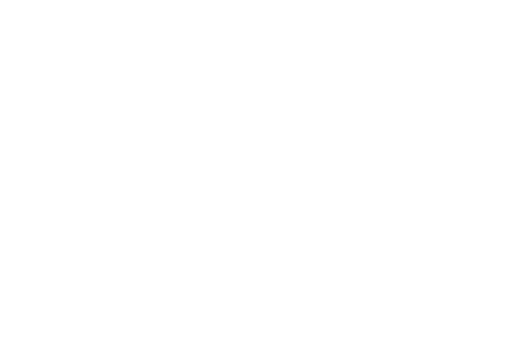 SEMI-FINALIST - Big Apple Film Festival and Screenplay Competition - 2020