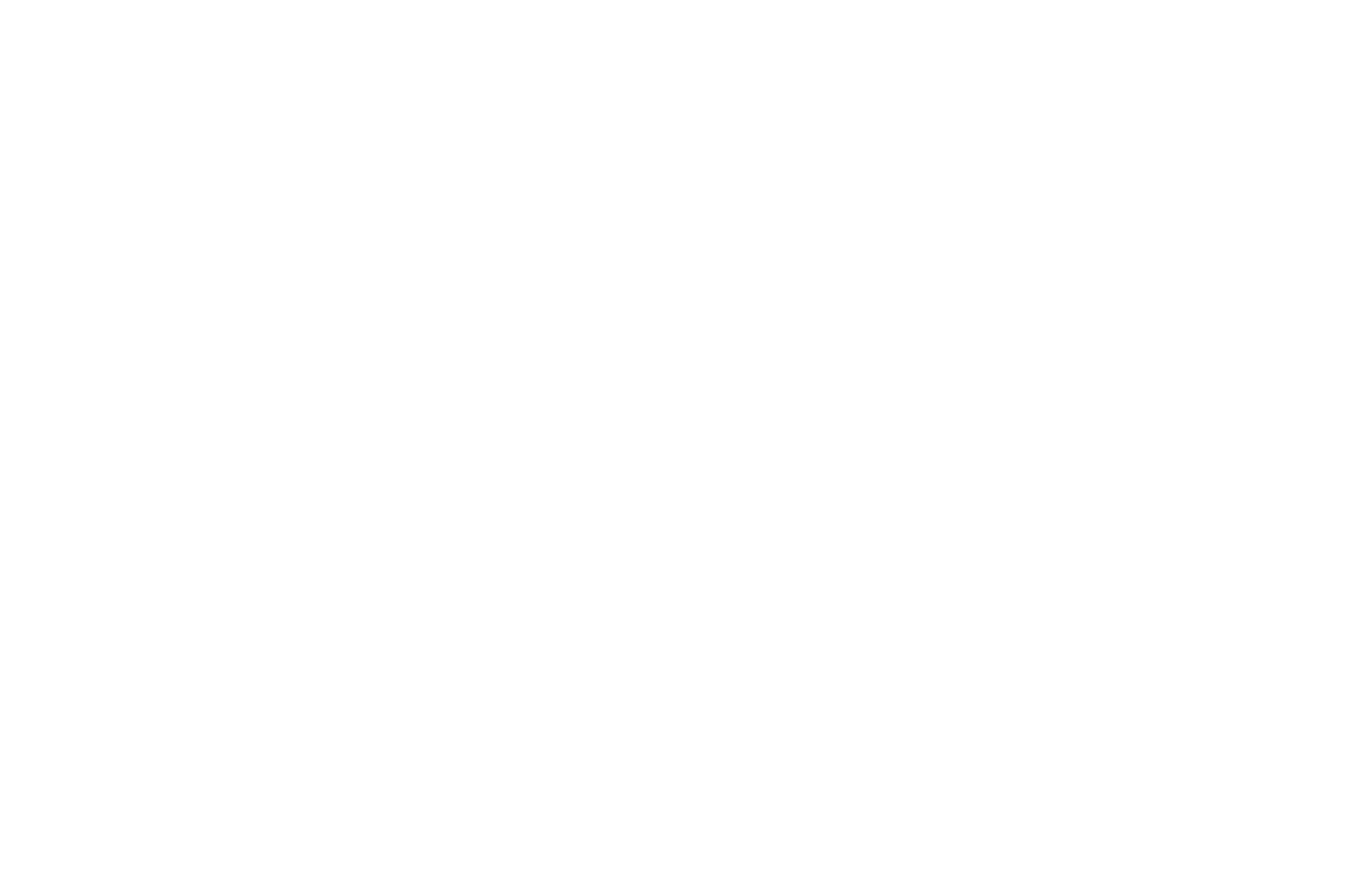 SEMI-FINALIST - Monthly Indie Shorts - 2020