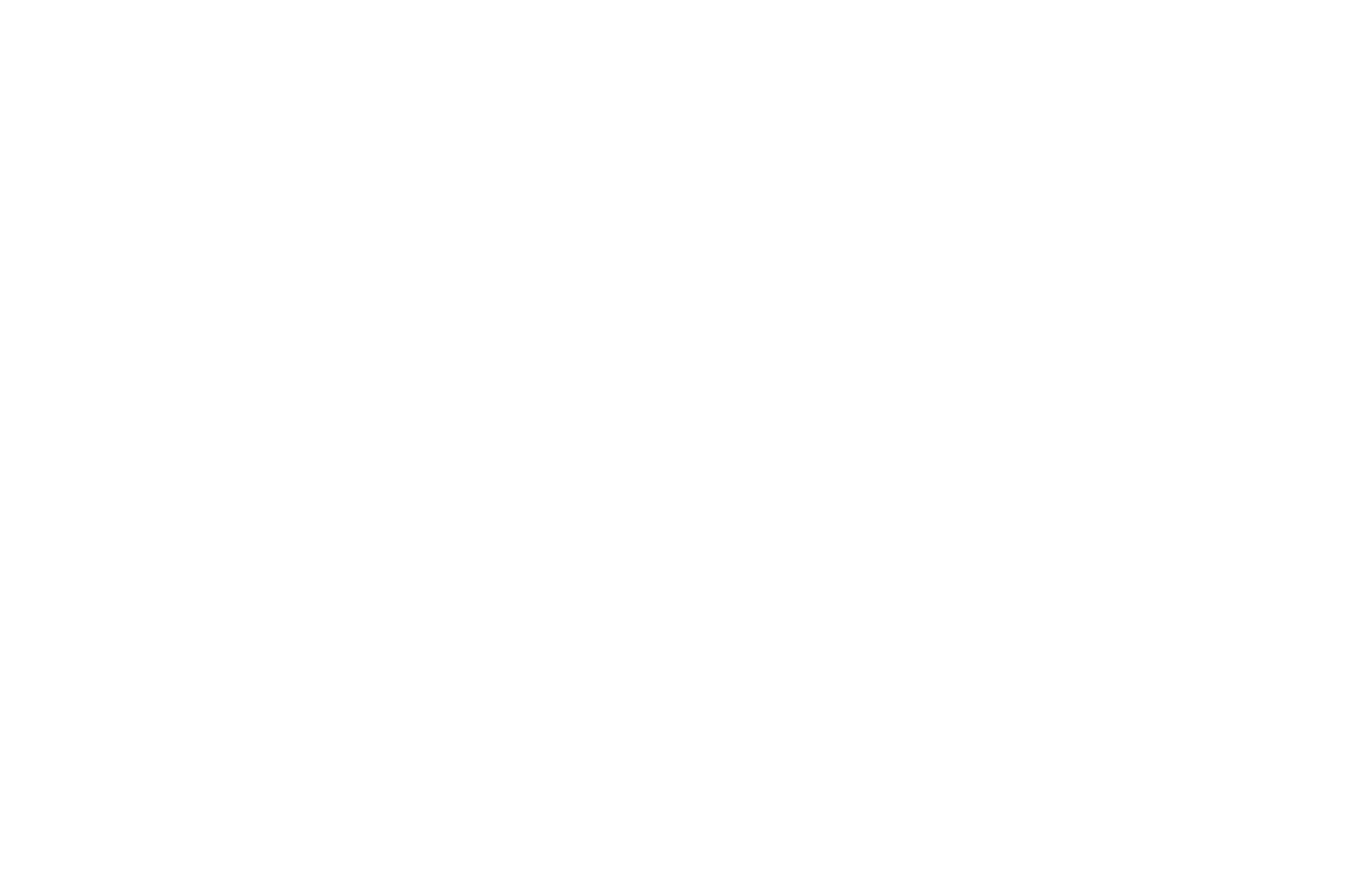 WINNER - 4th Dimension Independent Film Festival - 2020