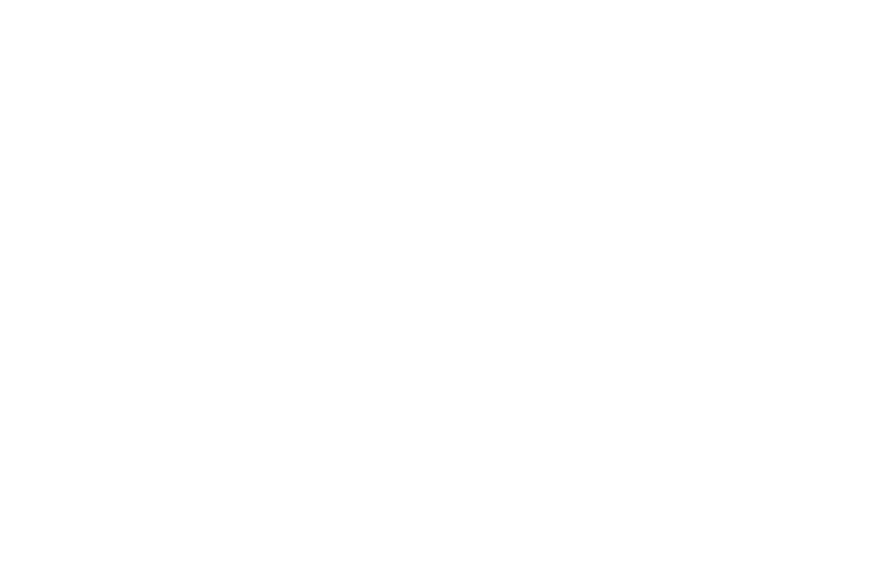 OFFICIAL SELECTION - International Film Festival of Andaman and Nicobar - 2020
