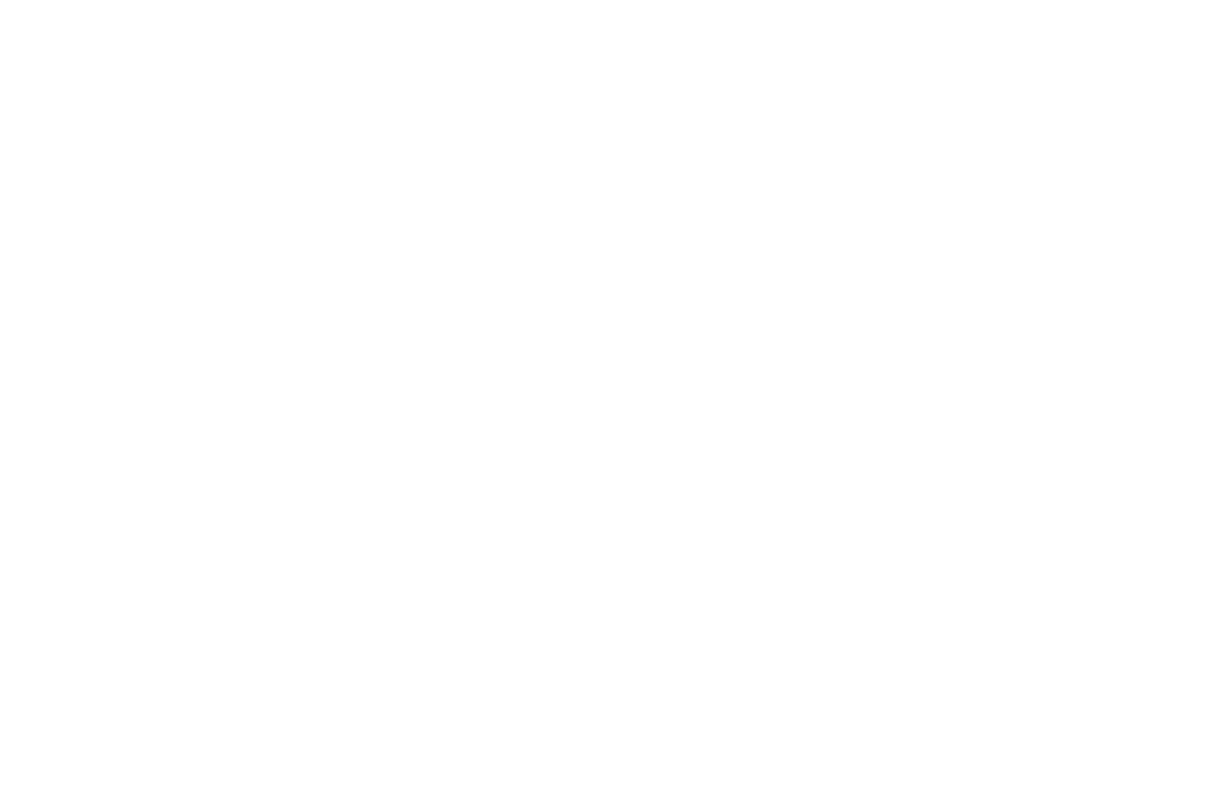 OFFICIAL SELECTION - Milan Short Film Festival - 2020