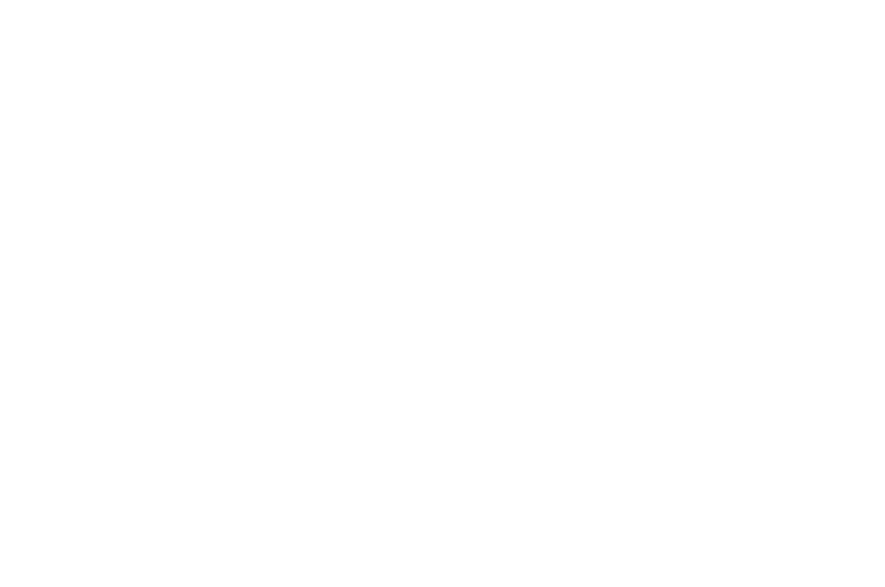 OFFICIAL SELECTION - Queen Palm International Film Festival - 2021