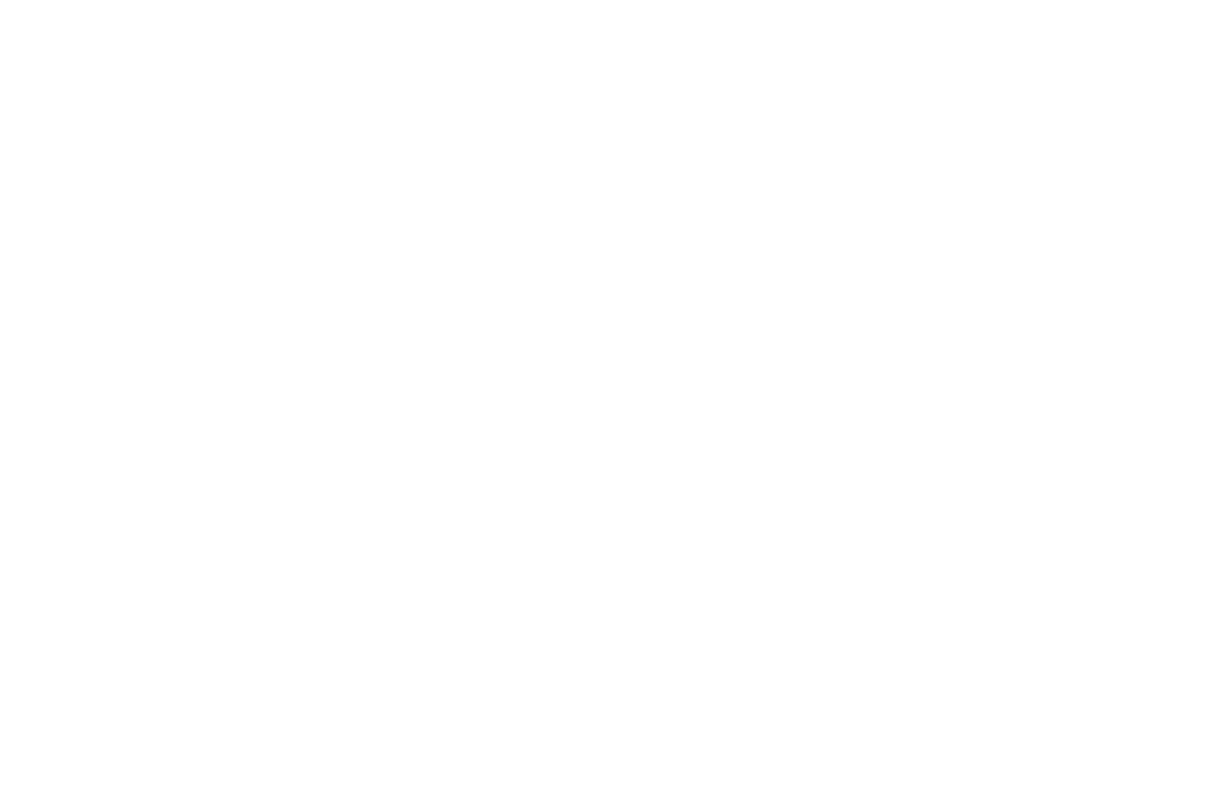 OFFICIAL SELECTION - Vertigo Film Fest - 2021 (1)
