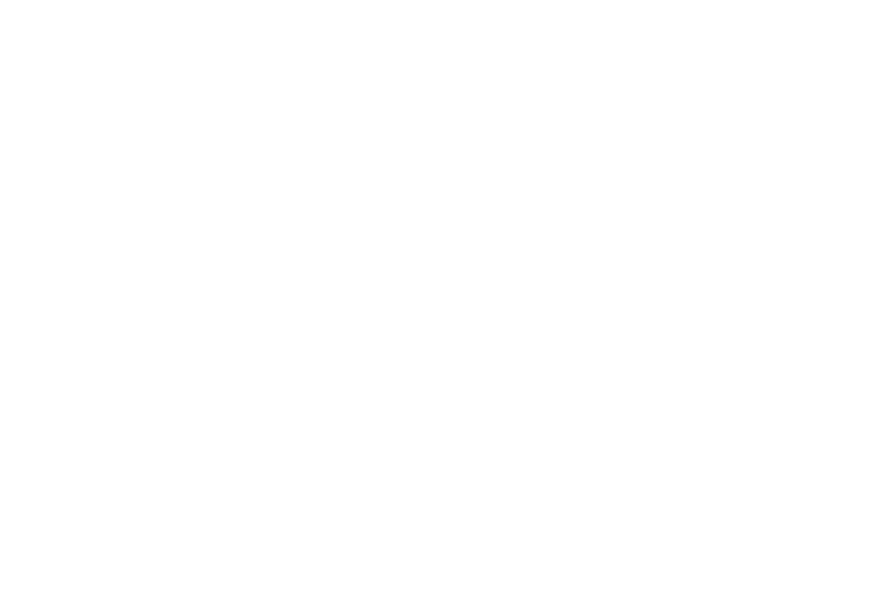 HONORABLE MENTION - Queen Palm International Film Festival - 2021