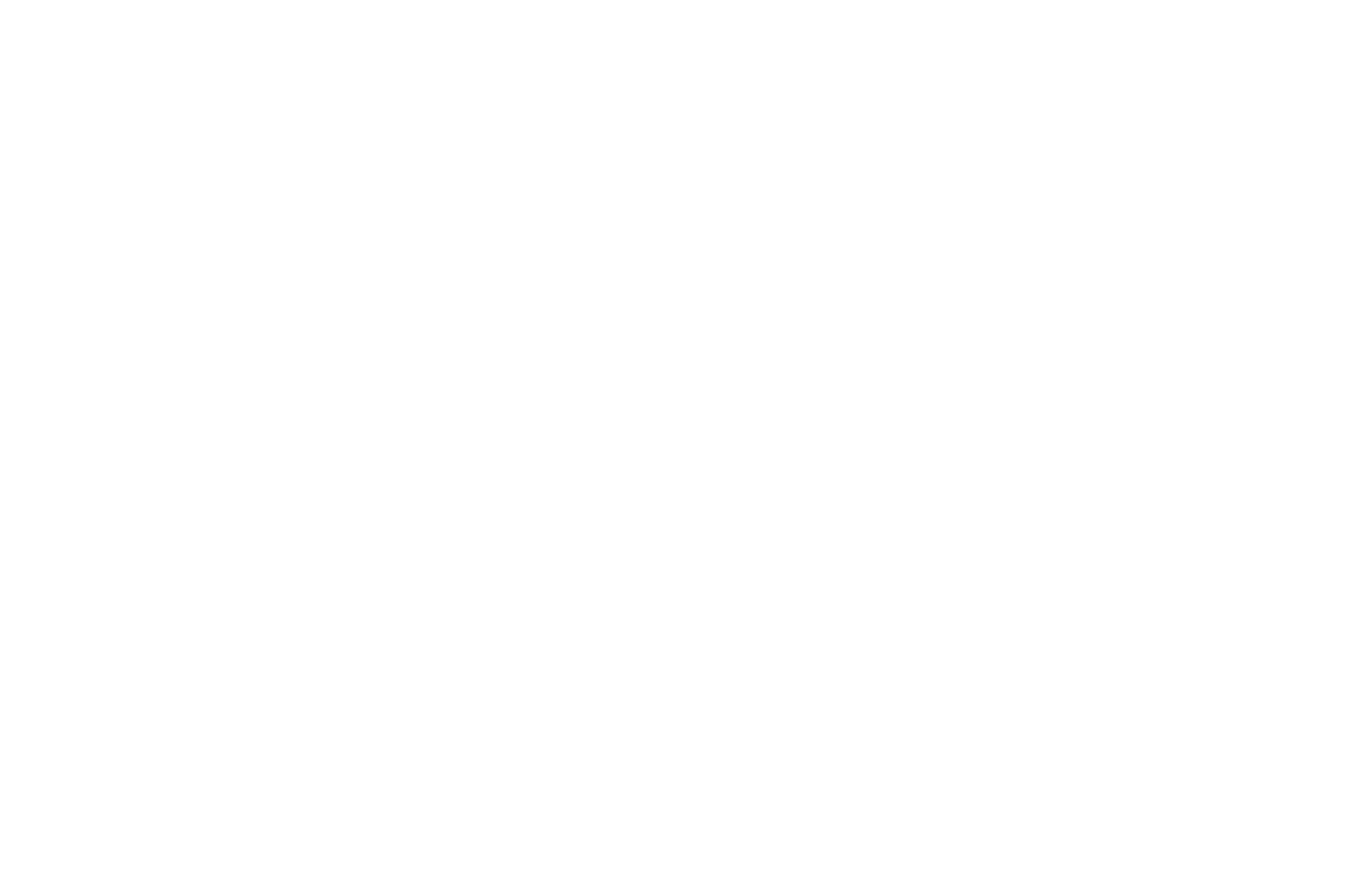 OFFICIAL SELECTION - Chicago Indie Film Awards - 2021