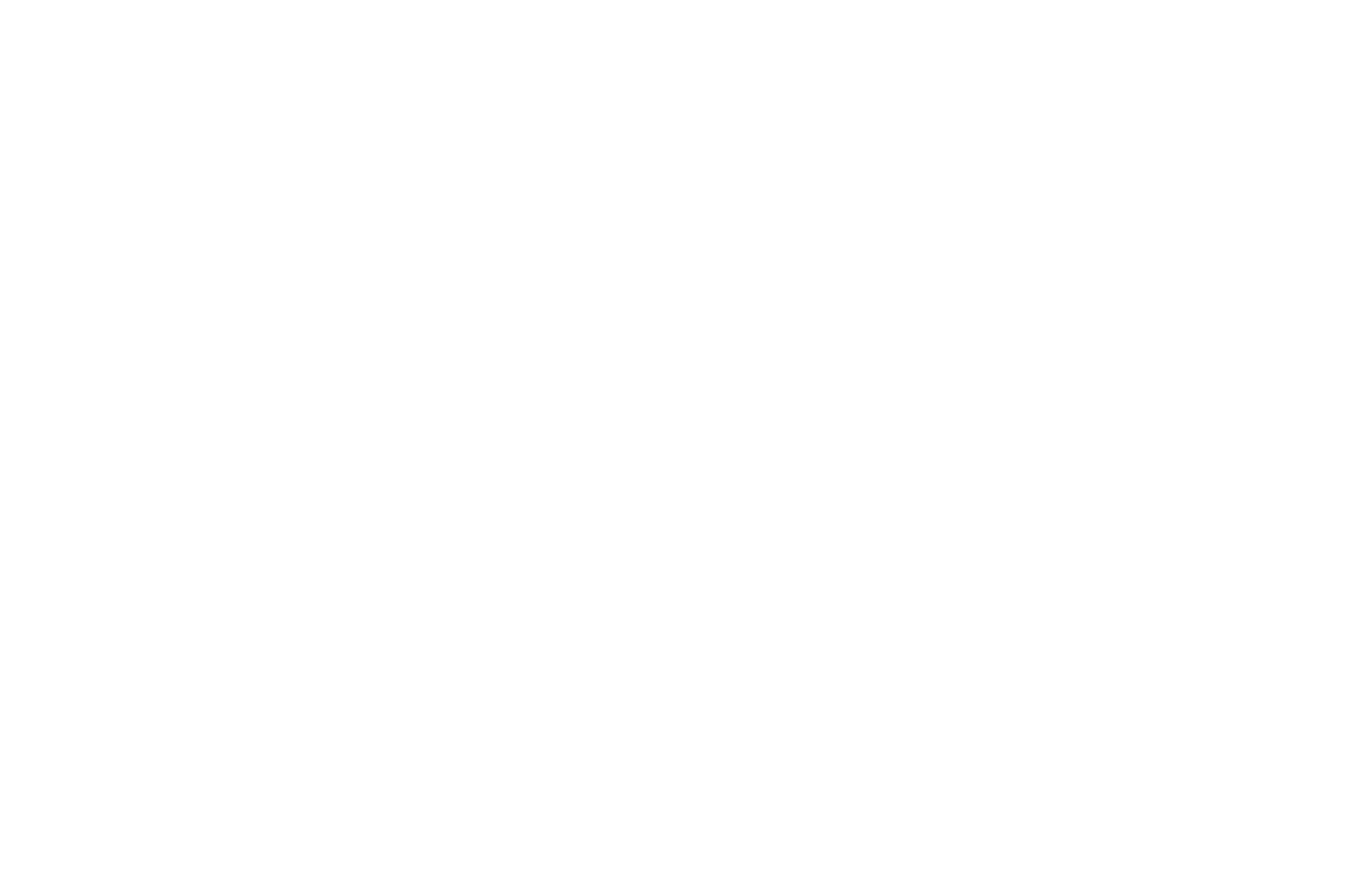 OFFICIAL SELECTION - Dubai Independent Film Festival - 2021
