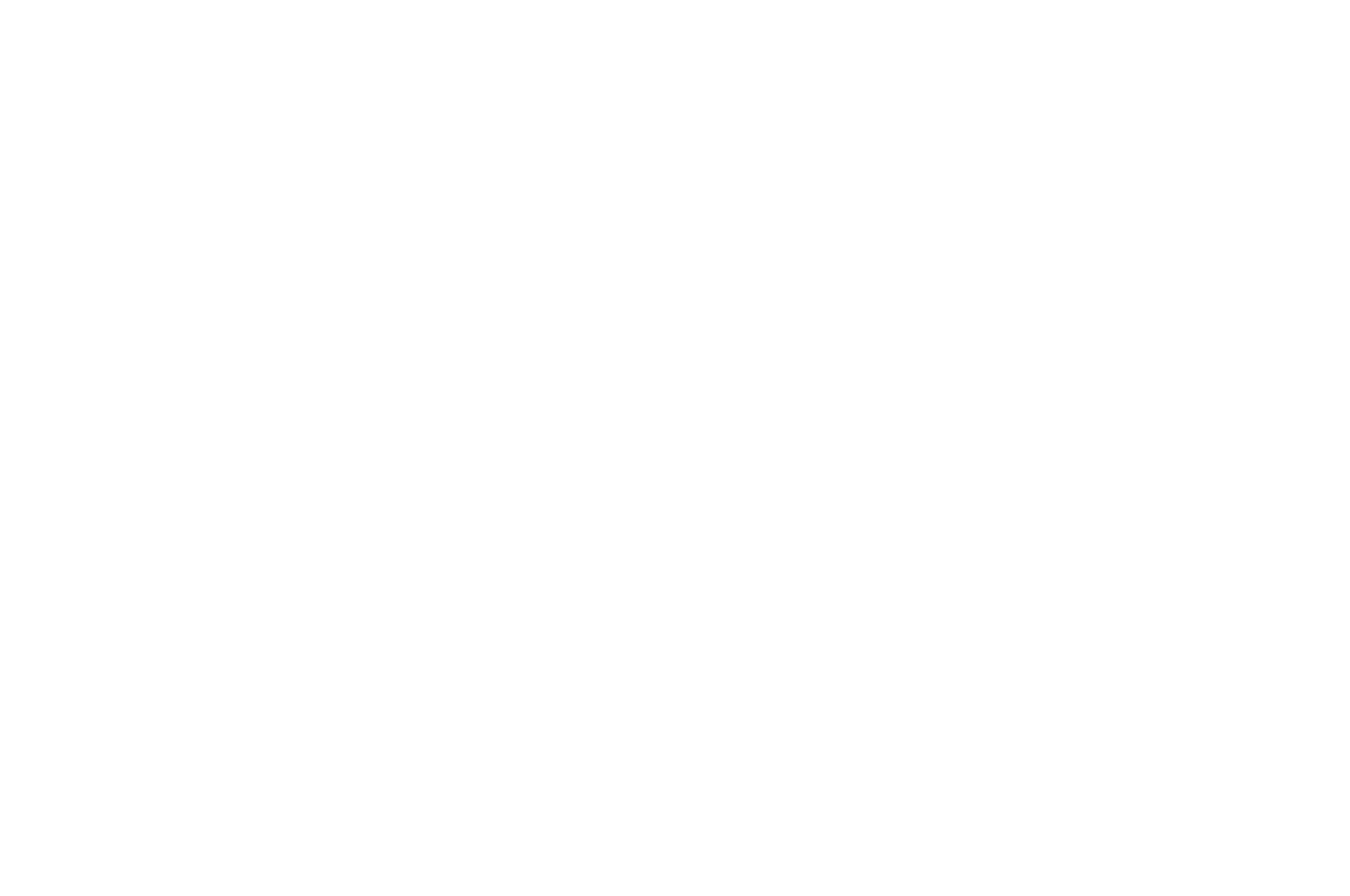 OFFICIAL SELECTION - New York Tri-State International Film Festival - 2021
