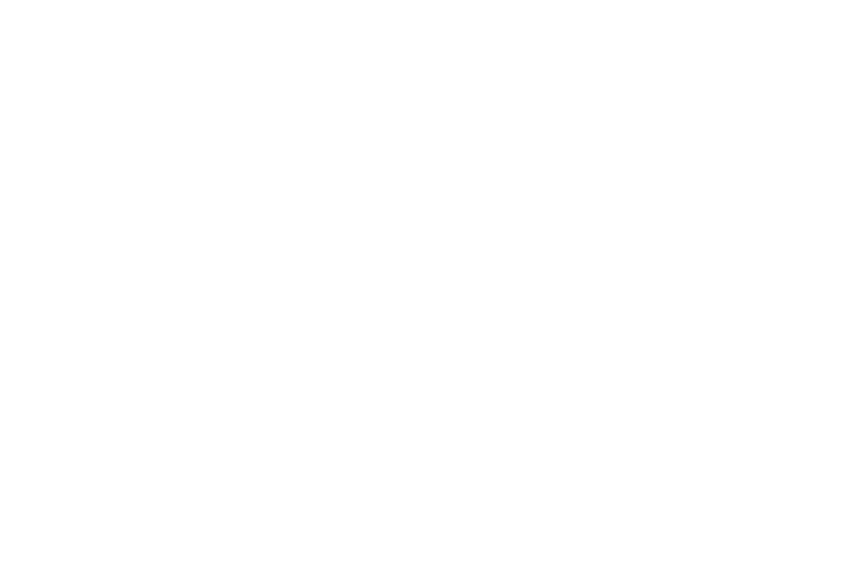 QUARTER-FINALIST - DFF Screenwriting Competition - 2021